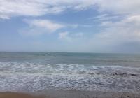 Bjala Strand 1